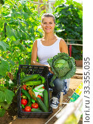 Joyful woman harvesting vegetables in a box. Стоковое фото, фотограф Яков Филимонов / Фотобанк Лори