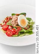 Купить «Close up delicious tuna salad with fresh organic vegetables.», фото № 33355451, снято 3 февраля 2020 г. (c) Ярослав Данильченко / Фотобанк Лори
