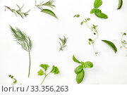 Купить «greens, spices or herbs on white background», фото № 33356263, снято 12 июля 2018 г. (c) Syda Productions / Фотобанк Лори