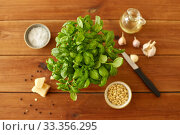 ingredients for basil pesto sauce on wooden table. Стоковое фото, фотограф Syda Productions / Фотобанк Лори
