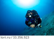 Купить «Rebreather diver or technical diver coming up from a dive on the airplane B-24 Liberator wreck, Vis Island, Croatia, Adriatic Sea, Mediterranean», фото № 33356923, снято 5 апреля 2020 г. (c) Nature Picture Library / Фотобанк Лори