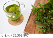 Купить «herbal tea with fresh peppermint on wooden board», фото № 33368807, снято 12 июля 2018 г. (c) Syda Productions / Фотобанк Лори