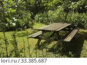 Купить «Old wooden picnic table covered with green Bryophyta - Moss and lichen growth in private backyard garden in summer, Jardin du Grand Portage garden, Saint...», фото № 33385687, снято 25 июня 2012 г. (c) age Fotostock / Фотобанк Лори