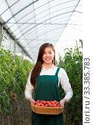 Купить «Young beautiful chinese woman works in green field», фото № 33385783, снято 13 июля 2020 г. (c) age Fotostock / Фотобанк Лори