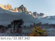 Купить «Cerro Castillo Mountains, Cerro Castillo National Park, Patagonia, Chile. January 2017.», фото № 33387343, снято 8 апреля 2020 г. (c) Nature Picture Library / Фотобанк Лори