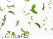Купить «greens, spices or herbs on white background», фото № 33391623, снято 12 июля 2018 г. (c) Syda Productions / Фотобанк Лори