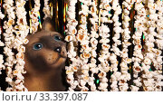 Cat figurine peeked out from garlands of popcorn. Garlands of popcorn for movie news. Invitation to watch movie. Comic news, funny entertainment, fun. 4K video. Стоковое видео, видеограф Dmitry Domashenko / Фотобанк Лори