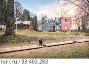 Мурановский кот A black cat in a clearing  in Muranovo Manor (2020 год). Редакционное фото, фотограф Baturina Yuliya / Фотобанк Лори