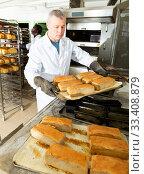 Confident baker spreads hot bread on a pallet. Стоковое фото, фотограф Яков Филимонов / Фотобанк Лори