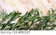 Купить «Green rosemary on wooden background, top view», фото № 33409027, снято 30 мая 2020 г. (c) Яков Филимонов / Фотобанк Лори