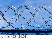 Купить «Barbed wire. Barbed wire on fence with blue sky to feel worrying», фото № 33420011, снято 1 апреля 2020 г. (c) easy Fotostock / Фотобанк Лори