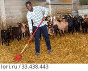 African-American man cleaning goat barn. Стоковое фото, фотограф Яков Филимонов / Фотобанк Лори