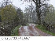 Купить «Stensjo by Smaland, Sweden.», фото № 33445667, снято 4 мая 2019 г. (c) age Fotostock / Фотобанк Лори