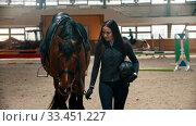 Купить «Hippodrome - the horsewoman keeping walking next to the horse and holding the reins in her hand», видеоролик № 33451227, снято 4 июня 2020 г. (c) Константин Шишкин / Фотобанк Лори