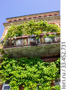 Купить «Flowers and ivy on the balcony of the house. Bottom view», фото № 33452731, снято 28 июля 2019 г. (c) Евгений Ткачёв / Фотобанк Лори