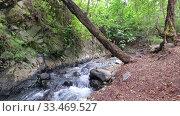 Купить «Rriver Clarios near Kakopetria. Cyprus», видеоролик № 33469527, снято 30 марта 2020 г. (c) Serg Zastavkin / Фотобанк Лори