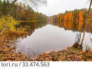 Купить «Colorful autumn landscape in Finland with reflection in water of lake», фото № 33474563, снято 2 апреля 2020 г. (c) easy Fotostock / Фотобанк Лори