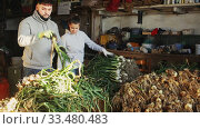 Man and woman sort green onions in vegetable store. Стоковое видео, видеограф Яков Филимонов / Фотобанк Лори