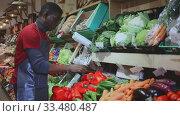 Купить «Confident African American seller in black apron arranging fresh red peppers on greengrocery counter», видеоролик № 33480487, снято 9 апреля 2020 г. (c) Яков Филимонов / Фотобанк Лори