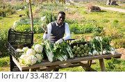 Купить «Afro man selling organic agricultural products», фото № 33487271, снято 21 февраля 2019 г. (c) Яков Филимонов / Фотобанк Лори