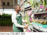 Купить «Man in apron arranging potted orchids on rack», фото № 33487391, снято 22 мая 2019 г. (c) Яков Филимонов / Фотобанк Лори