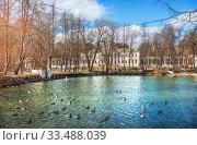 Купить «Пруд и утки Big Pond with ducks», фото № 33488039, снято 21 марта 2020 г. (c) Baturina Yuliya / Фотобанк Лори