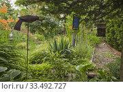 Купить «Orange Hemerocallis 'Sammy Russel' - Daylily flowers and decorative ornaments in backyard garden in summer.», фото № 33492727, снято 9 июля 2014 г. (c) age Fotostock / Фотобанк Лори