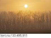 Sunrise near Znojmo, South Moravia, Czech Republic. Стоковое фото, фотограф Richard Semik / easy Fotostock / Фотобанк Лори