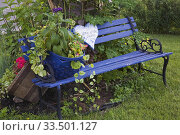 Купить «Blue painted wooden park bench decorated with flower baskets of red Pelargonium - Geranium and purple Lobelia flowers on green grass lawn of urban front yard garden in summer.», фото № 33501127, снято 5 июля 2014 г. (c) age Fotostock / Фотобанк Лори
