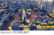 TILLAMOOK, OREGON, USA - SEPTEMBER 1, 2015: wide view of the large packing room at tillamook cheese factory in oregon. Стоковое фото, фотограф Zoonar.com/Christopher Bellette / age Fotostock / Фотобанк Лори