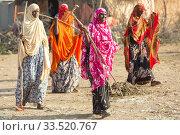 Burferedo, Somali Region, Ethiopia - Clean up campaign OWDA (2019 год). Редакционное фото, агентство Caro Photoagency / Фотобанк Лори