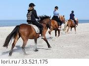 Dierhagen, young women on a horseback ride on the beach of the Baltic Sea (2018 год). Редакционное фото, агентство Caro Photoagency / Фотобанк Лори