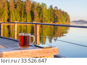 Купить «A cup of tea and a phone in the background of the landscape», фото № 33526647, снято 25 мая 2018 г. (c) Дмитрий Тищенко / Фотобанк Лори