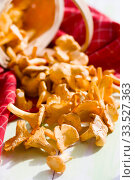 Edible mushrooms. Сhanterelles and basket on wooden background. Focus on mushrooms. Стоковое фото, фотограф Papoyan Irina / Фотобанк Лори