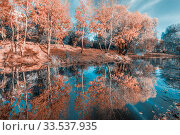 Купить «Lake in the city park in the Golden Autumn.», фото № 33537935, снято 14 октября 2018 г. (c) Акиньшин Владимир / Фотобанк Лори