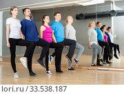Купить «People fulfilling Celtic dance movements», фото № 33538187, снято 3 августа 2020 г. (c) Яков Филимонов / Фотобанк Лори