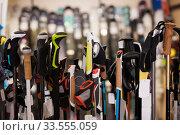 Large assortment of ski poles in foreground. Стоковое фото, фотограф Яков Филимонов / Фотобанк Лори