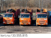Три автомобиля КАМАЗ для перевозки металлолома. Редакционное фото, фотограф Александр Щепин / Фотобанк Лори