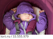 Caucasian sleeping infant portrait, lying inside of perambulator fastened with safety belt, hands up. Стоковое фото, фотограф Кекяляйнен Андрей / Фотобанк Лори