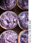 Купить «Prepare gluten free blueberries muffin. Raw lilac dough in baking tins», фото № 33565547, снято 6 июня 2017 г. (c) Ирина Мойсеева / Фотобанк Лори