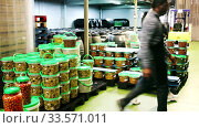 Workers store plastic containers with ripe olives in factory. Стоковое видео, видеограф Яков Филимонов / Фотобанк Лори
