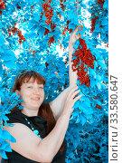 Купить «Beautiful mature woman picks ripe mountain ash on an autumn sunny day.», фото № 33580647, снято 7 августа 2011 г. (c) Акиньшин Владимир / Фотобанк Лори