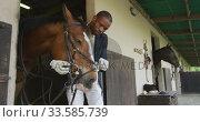 Купить «African American man putting bridle on the Dressage horse», видеоролик № 33585739, снято 27 сентября 2019 г. (c) Wavebreak Media / Фотобанк Лори