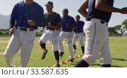 Baseball players training before playing. Стоковое видео, агентство Wavebreak Media / Фотобанк Лори
