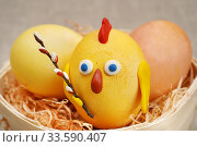 Купить «Пасхальный декор. Цыплёнок из крашеного яйца», эксклюзивное фото № 33590407, снято 21 апреля 2020 г. (c) Dmitry29 / Фотобанк Лори