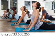 Купить «People doing stretching exercises», фото № 33606255, снято 30 июля 2018 г. (c) Яков Филимонов / Фотобанк Лори