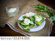 Купить «fried bread toasts with salad leaves, cheese spread and mozzarella in a plate», фото № 33614055, снято 22 апреля 2020 г. (c) Peredniankina / Фотобанк Лори