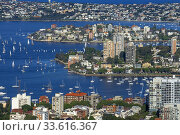 Aerial view of Keltie bay Darling Point and Point Piper from tower eye Sydney, New South Wales, AUSTRALIA. Стоковое фото, фотограф Sergi Reboredo / age Fotostock / Фотобанк Лори