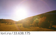 Mountain meadow timelapse at the summer. Clouds, trees, green grass and sun rays movement. Стоковое видео, видеограф Александр Маркин / Фотобанк Лори