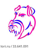 Купить «Curly Ribbon style illustration of head of an angry and aggressive Manchester Terrier, a breed of dog of the smooth-haired terrier type done in twisted free flowing line art on isolated background.», фото № 33641091, снято 25 мая 2020 г. (c) easy Fotostock / Фотобанк Лори